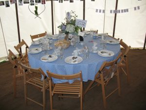 Gingham-Table-Cloth